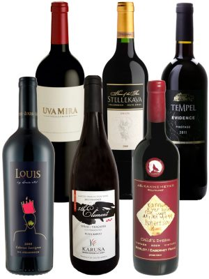 Premium Weinpaket Big5 Red