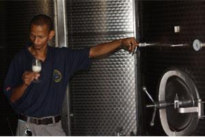 Auch im Weinkeller findet eine tägliche Überprüfung der Vergärung statt