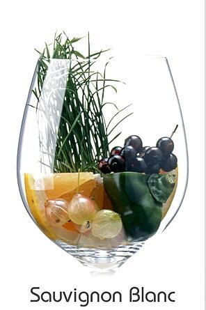 Sauvignon Blanc Aromaglas